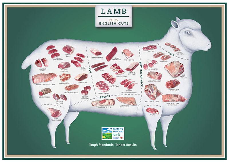 A1-Cuts-Posters-lamb
